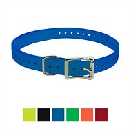 "SportDOG 1"" Replacement Collar Strap for Dogs, Blue"