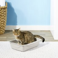 Petmate Litter Pan with Microban, Color Varies, Medium