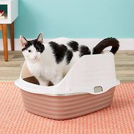 Petmate Large Cat Litter Pan With Rim, Color Varies, Large