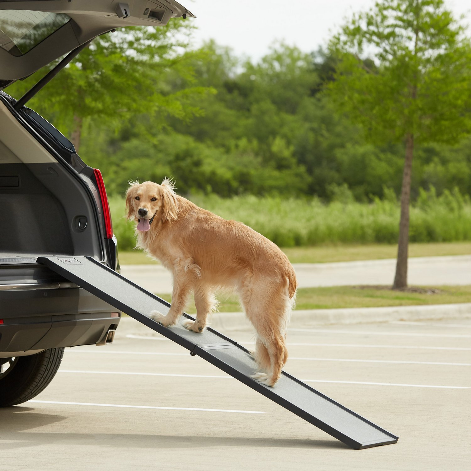 Gen7pets Feather Lite Foldable Dog Car Ramp Chewy Com