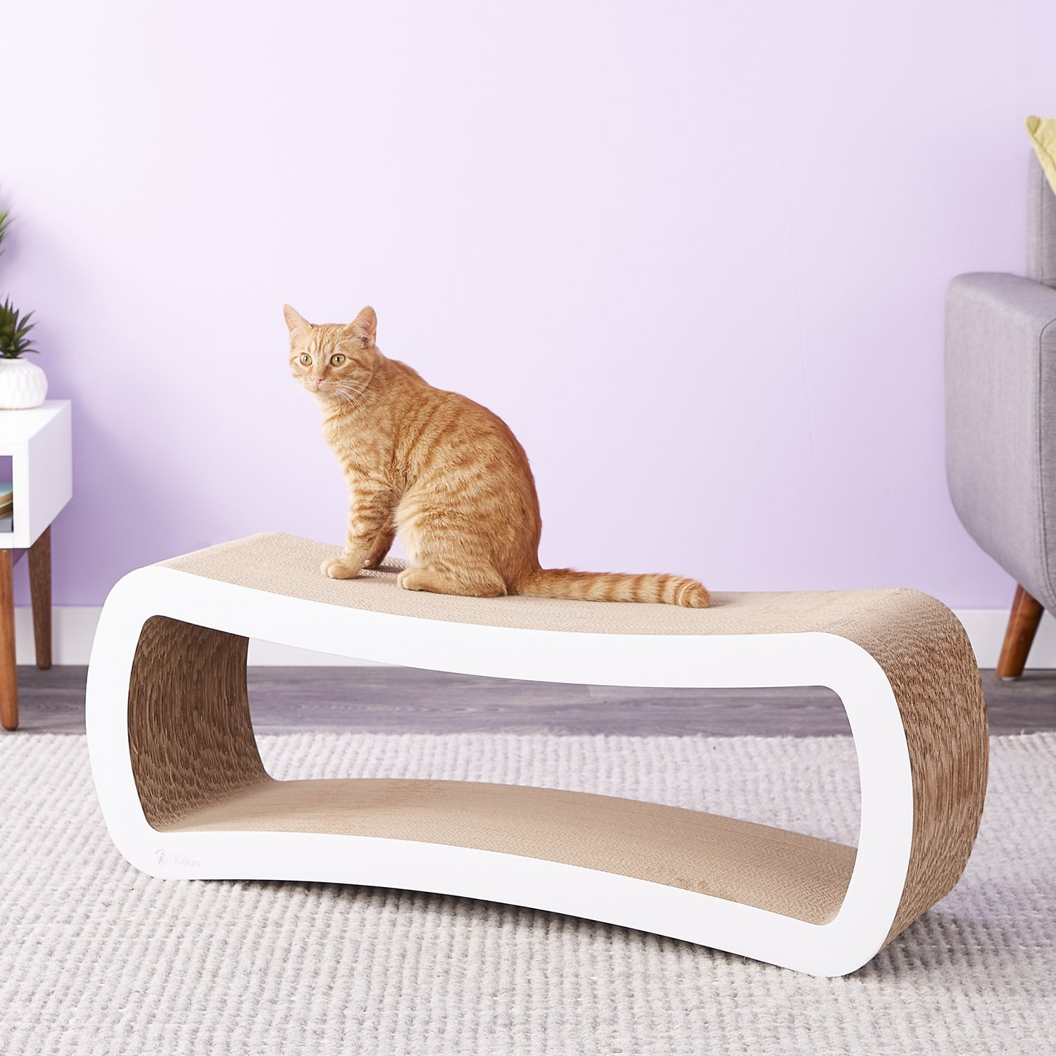 Petfusion Jumbo Cat Scratcher Lounge White Roll Over Image To Zoom In Video