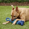 Hartz Tuff Stuff Retriever Dog Toy, Color Varies