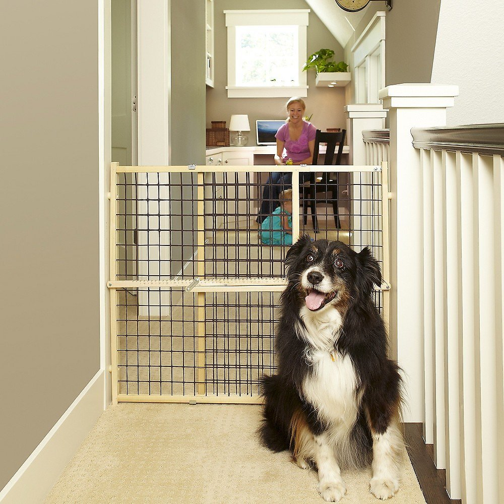 Mypet Extra Wide Wire Mesh Gate For Dogs Amp Cats Chewy Com
