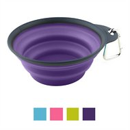 Dexas Popware for Pets Collapsible Travel Cup with Carabiner, Gray/Purple, Large