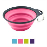 Dexas Popware for Pets Collapsible Travel Cup with Carabiner, Gray/Pink, Large