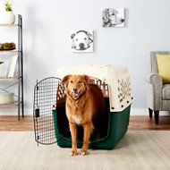Petmate Ruff Maxx Kennel for Dogs & Cats, Off White/Green, 40-in