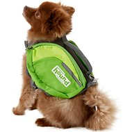 Outward Hound DayPak for Dogs, Green, Small