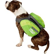 Outward Hound DayPak for Dogs, Green, Medium