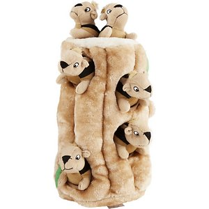 Outward Hound Hide A Squirrel Squeaky Puzzle Plush Dog Toy, Ginormous