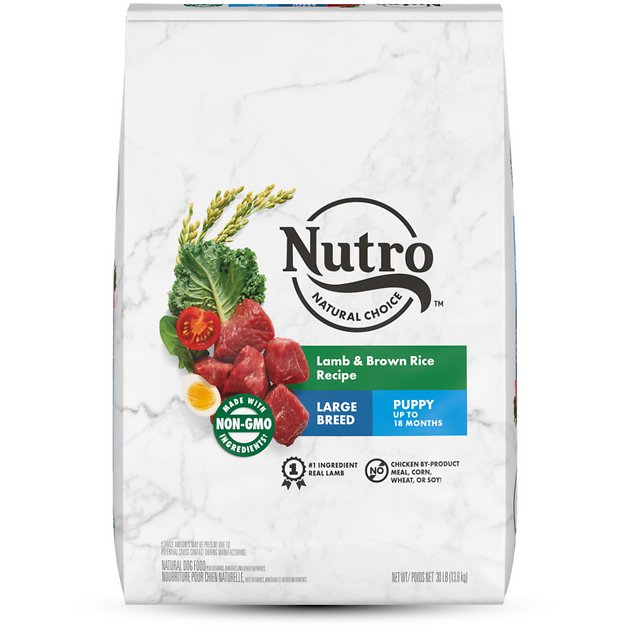 Nutro Wholesome Essentials Large Breed Puppy Pasture Fed Lamb Rice Recipe Dry Dog Food 30 Lb Bag Chewy