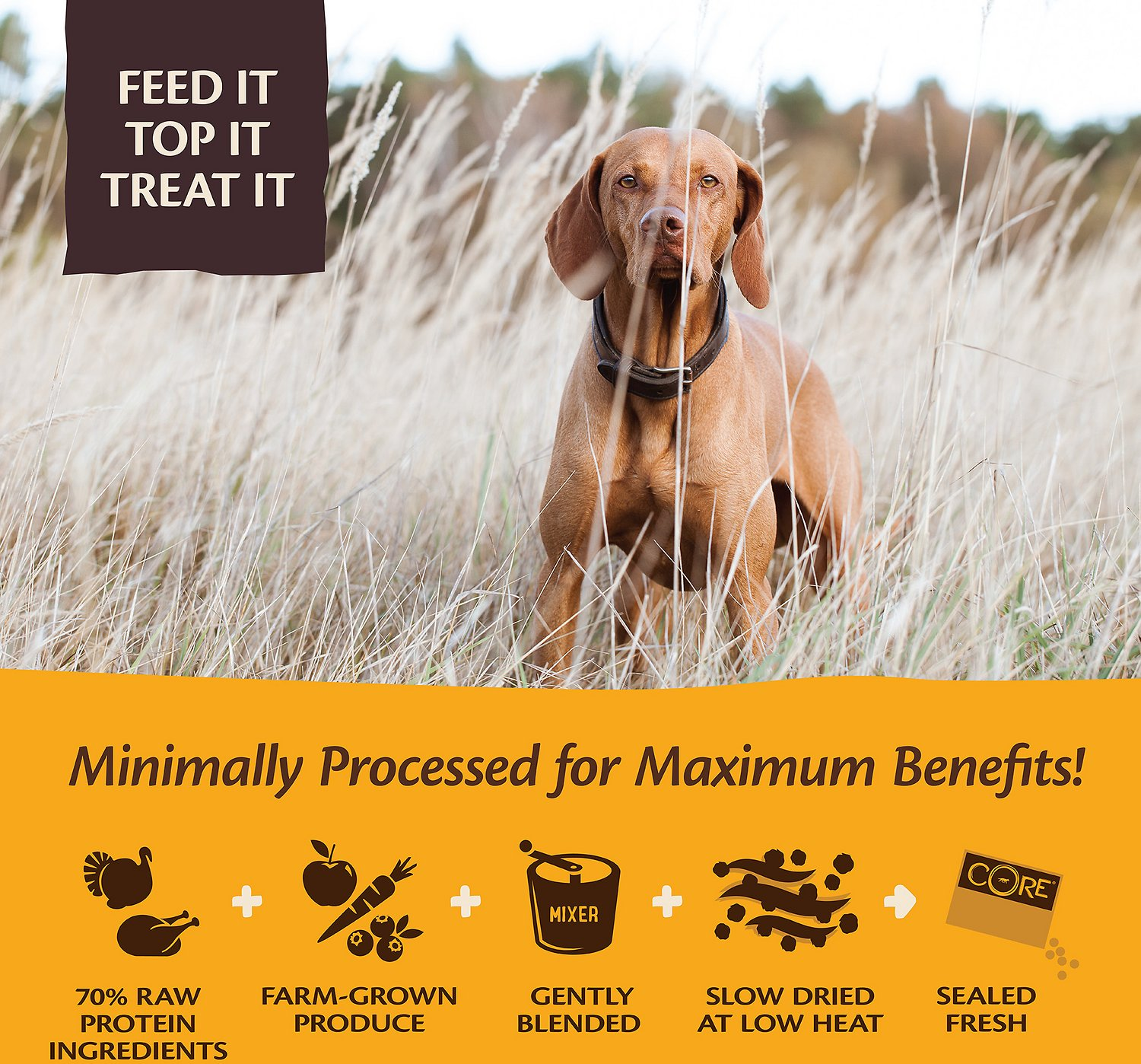 Wellness Core Tender Bites Puppy Recipe Meal Or Mixer Air Dried
