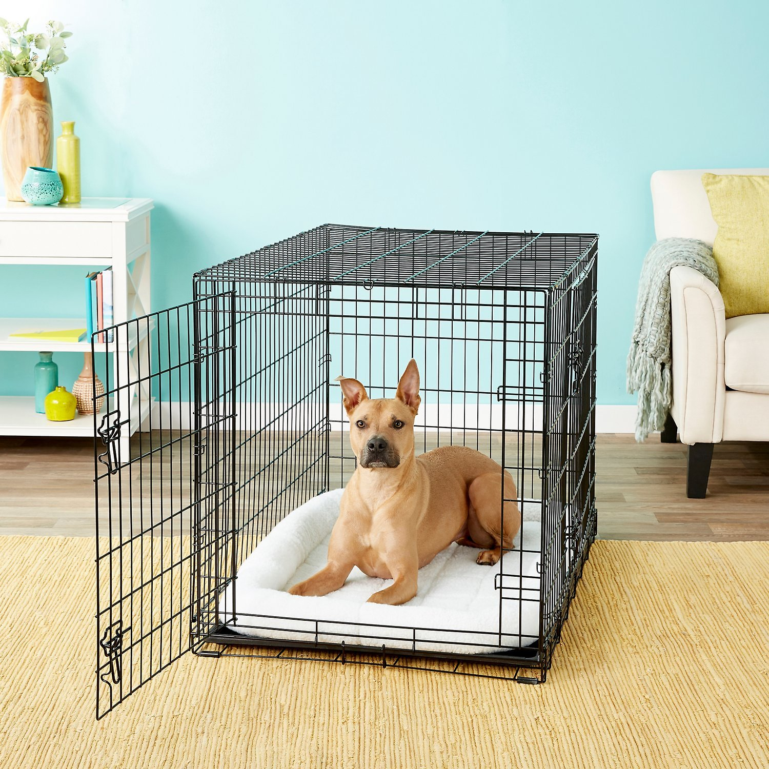 Frisco Fold Carry Double Door Dog Crate 42 In Chewy