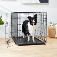 Frisco Fold & Carry Double Door Collapsible Wire Dog Crate, 42 inch