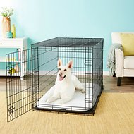 Frisco Fold & Carry Single Door Collapsible Wire Dog Crate, 48 inch