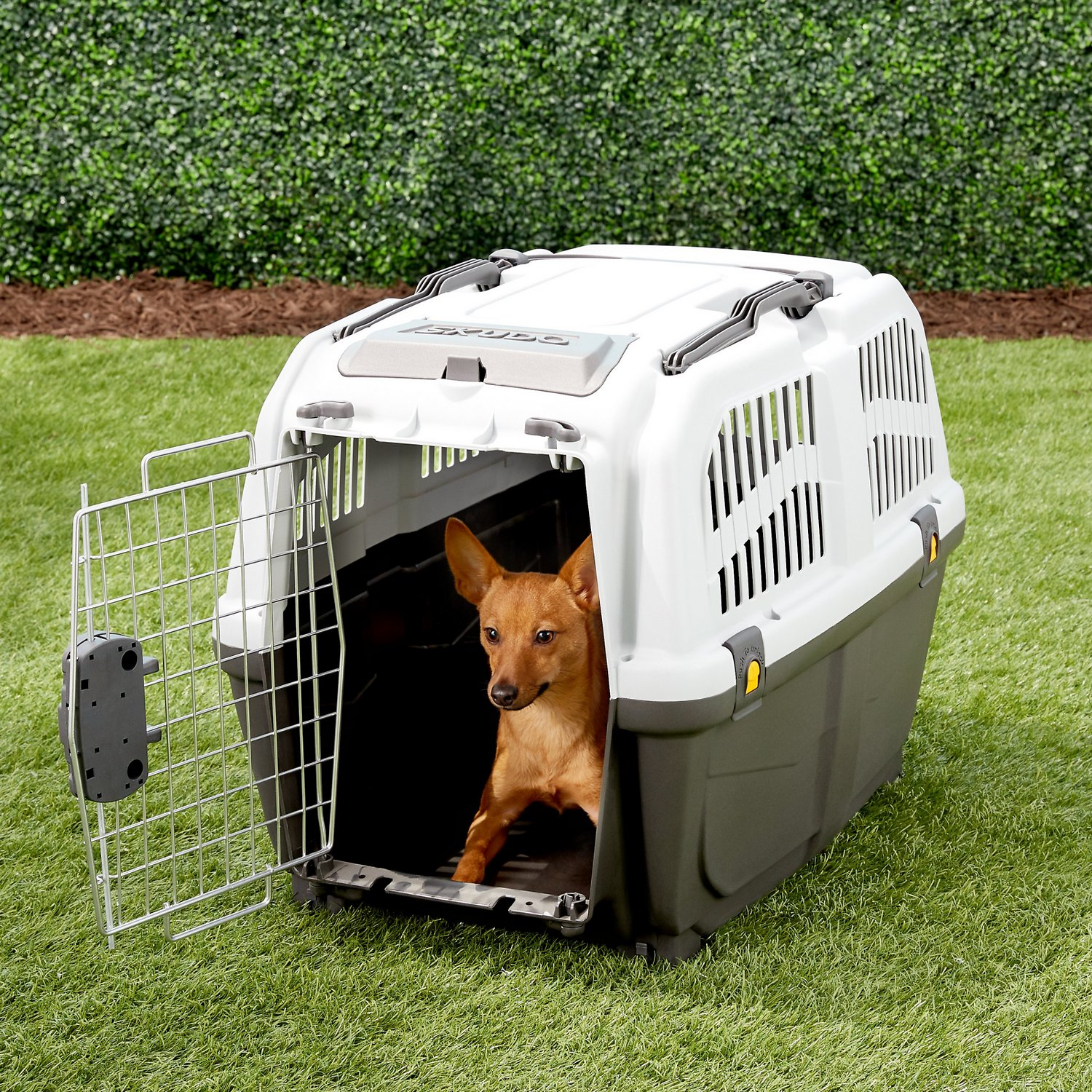 MidWest Homes For Pets Skudo Plastic Pet Carrier