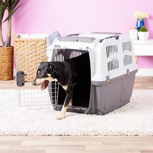 MidWest Skudo Deluxe Plastic Dog & Cat Kennel, 32-in; Take your pal anywhere comfortably and securely with the MidWest Skudo Deluxe Plastic Pet Carrier. Made of sturdy and durable plastic, it's rugged enough for any terrain or ride, whether it's going on a road trip or just getting to the vet. There's plenty of space for a dog, cat or small furry buddy, and lots of slots throughout for more air ventilation and temperature control—plus, your fur baby will be able to check out all the views along the way. The carrying handle makes it easy to grab and go, and you can fold it down so you can slide the carrier in the car. You can lock the door with an easy push of a button to keep your pal safely inside. Plus, it's ready to use from the get go, because it snaps together easily, with no tools needed.