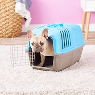 MidWest Spree Plastic Pet Carrier, Blue, 22-in