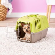 MidWest Spree Plastic Pet Carrier, Green, 19-in