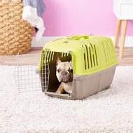 MidWest Spree Plastic Pet Carrier, Green, 22-in