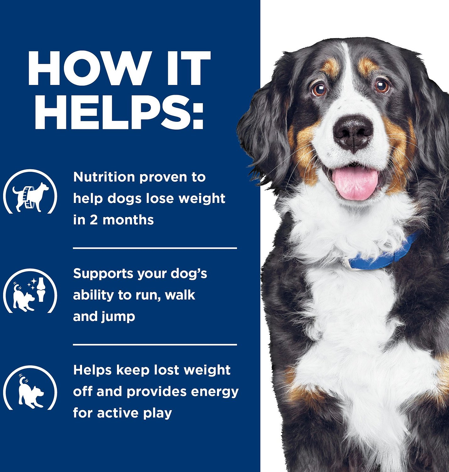 Hill S Prescription Diet Metabolic Mobility Weight Joint Care