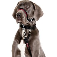 Halti OptiFit Dog Headcollar, Large