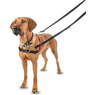 Halti Dog Harness, Black/Red, Large