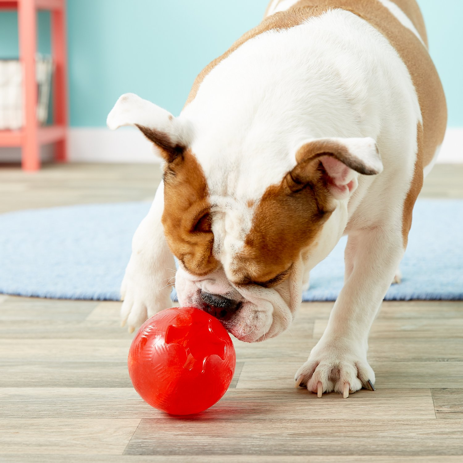 Ethical Pet Play Strong Rubber Ball Tough Dog Chew Toy, 3