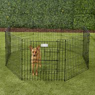 MidWest Exercise Pen with Split MAXLock Door, Black, 24-in