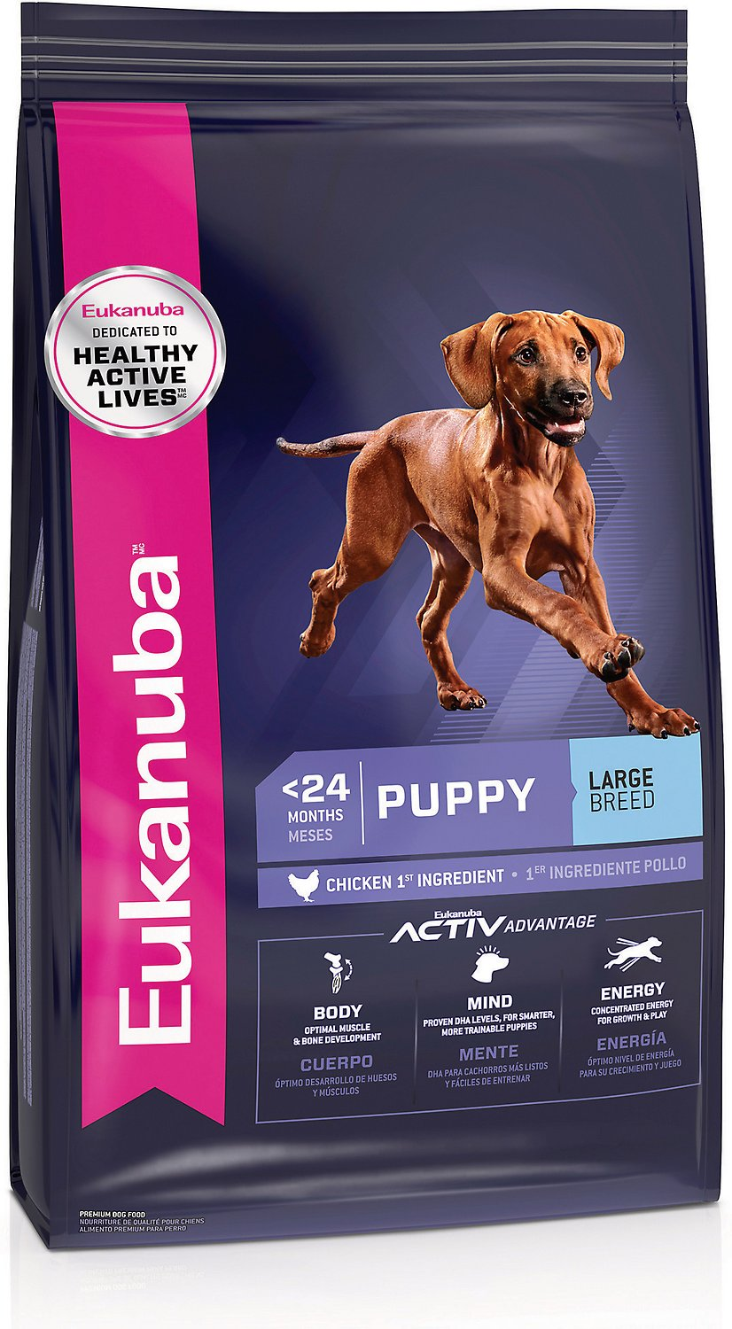 Eukanuba Puppy Food >> Eukanuba Large Breed Puppy Dry Dog Food, 33-lb bag - Chewy.com