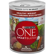 Purina ONE SmartBlend Tender Cuts in Gravy Lamb & Brown Rice Entree Adult Canned Dog Food, 13-oz, case of 12