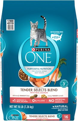6. Purina ONE Tender Selects Blend with Real Salmon Dry Cat Food