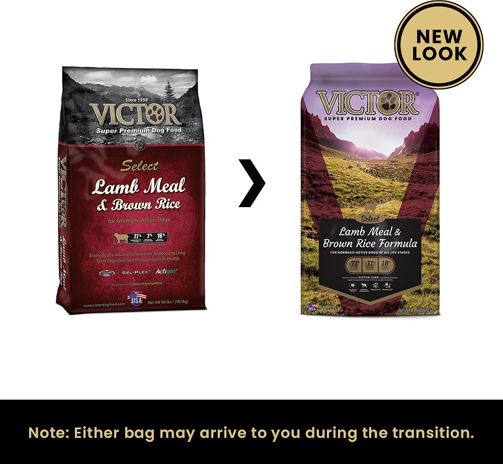 Victor Dog Food Reviews >> Victor Lamb Meal & Brown Rice Dry Dog Food, 40-lb bag - Chewy.com