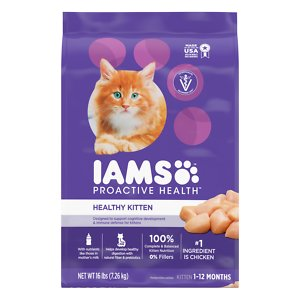 Best Kitten Food in 2019 | Wet, Canned & Dry | Reviews & Guides