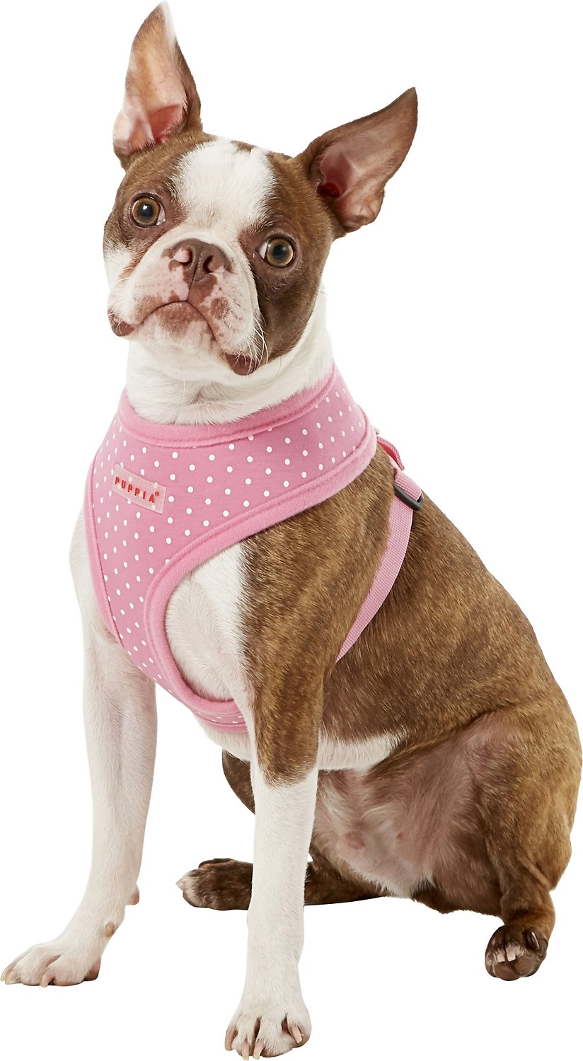 Puppia soft dotty print dog harness pink dotty medium chewy video pooptronica Images