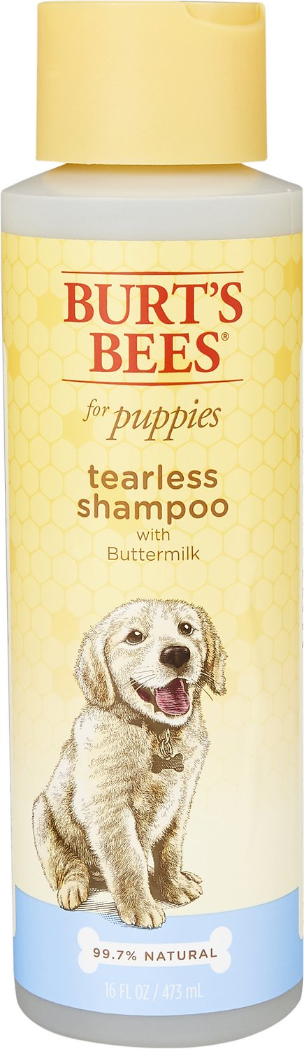 Burt S Bees Tearless Puppy Shampoo With Buttermilk For Dogs