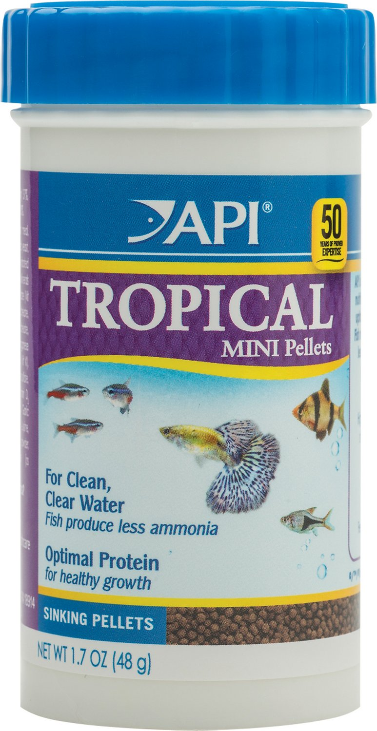 Best Food for Betta Fish: Our Top Picks 4