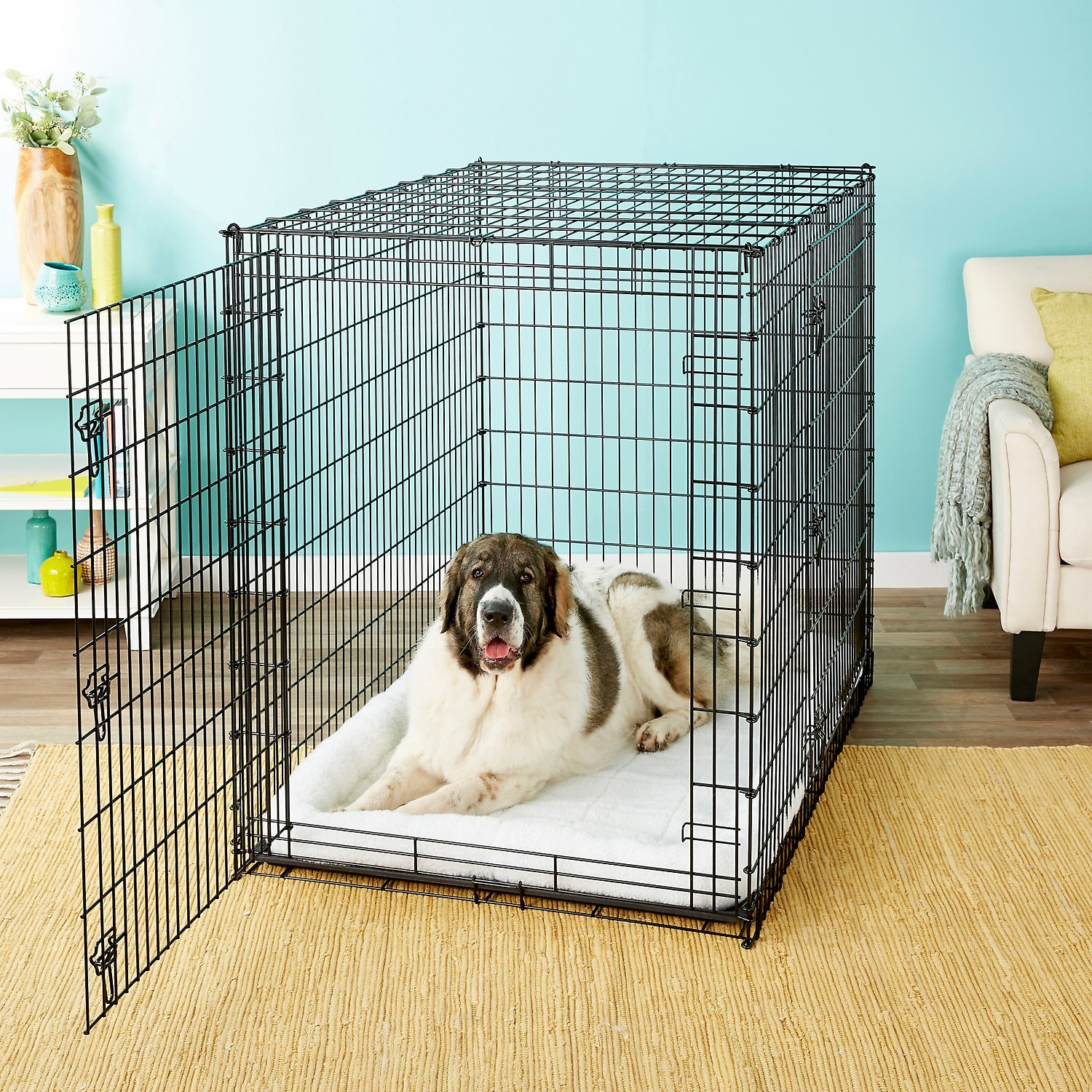 Frisco Xx Large Heavy Duty Double Door Dog Crate At Low Prices Free Shipping At Chewy Com