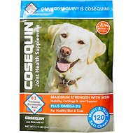 Nutramax Cosequin (DS) Plus MSM Soft Chews Joint Health Dog Supplement, 120 count