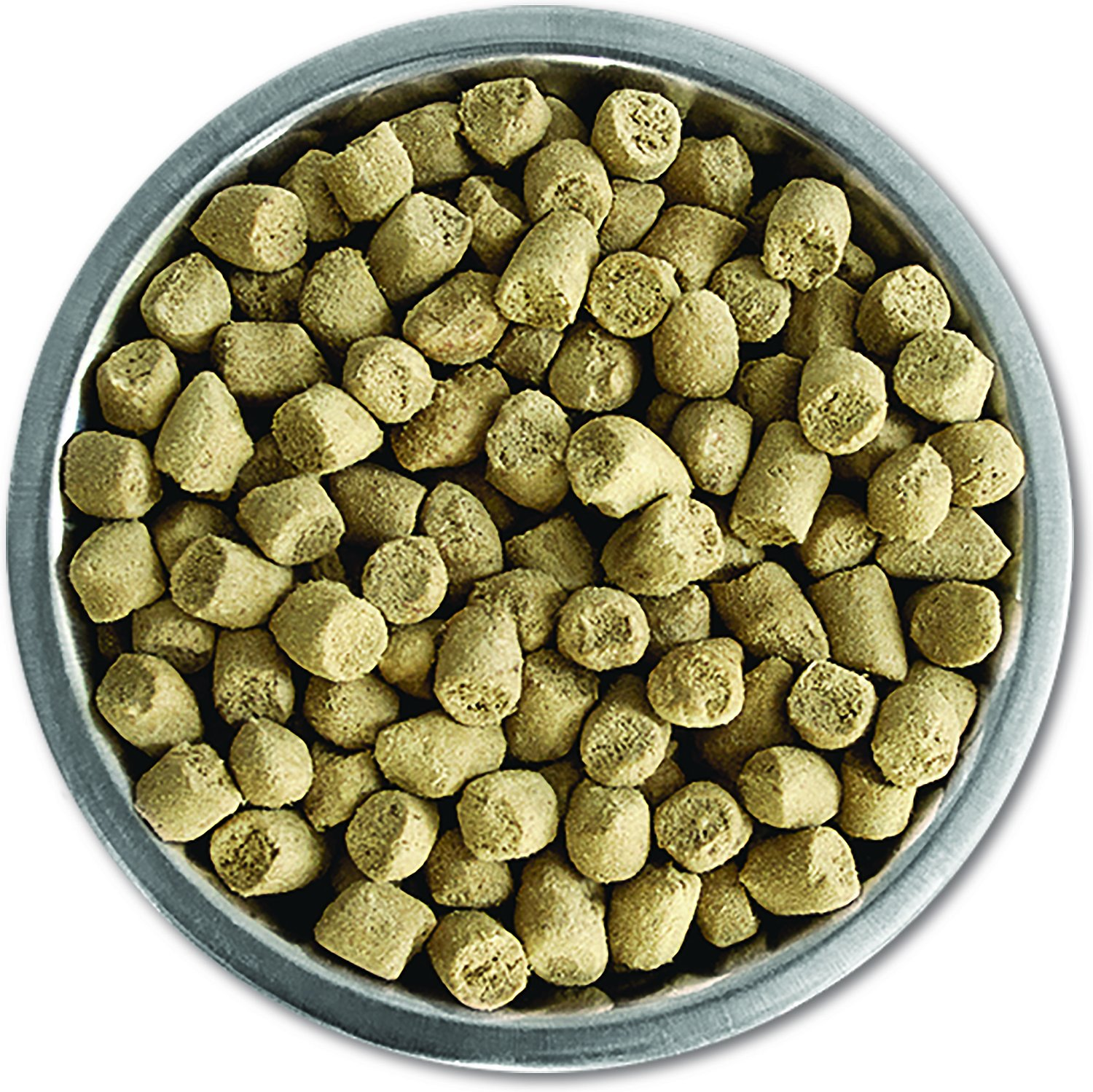 Where To Buy Backcountry Cat Food