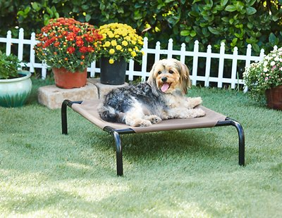 Frisco Elevated Dog Cot Bed
