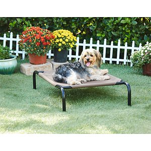 Frisco Steel-Framed Elevated Dog Bed, Brown, Small; Frisco Steel-Framed Elevated Dog Bed gives your dog the perfect rest he's earned after a long walk, a day of play or just quality time with the family. It features a sturdy, powder-coated steel frame and a durable, PVC-coated fabric sleeping surface made to last. The tight, breathable fabric provides an added level of comfort and support that also keeps your dog cool and won\\\'t sag after extended use. Skid resistant feet provide extra stability during movement, making this ultra comfortable bed ideal for use on various surfaces, indoors or outside. It's easy to assemble and just as easy to clean, with surfaces that don't cling to dirt and grime. Give your four-legged family member the bed he deserves with Frisco Steel-Framed Elevated Dog Bed.