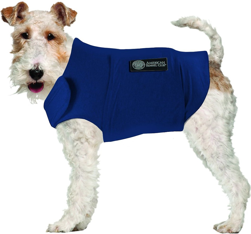 Calming Coat For Dogs Blue Medium Chewy Com