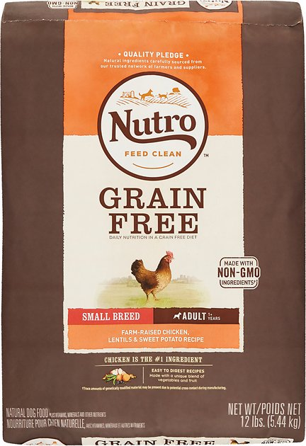 Nutro Dog Food Chewy
