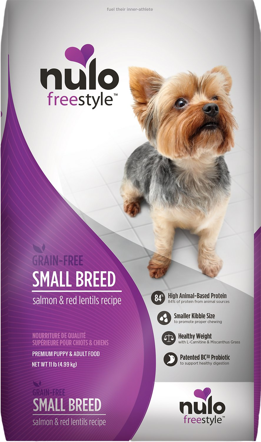 best dog food for jack russell