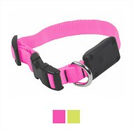 Nite Ize NiteDawg X-Small LED Light-Up Dog Collar, Neon Pink