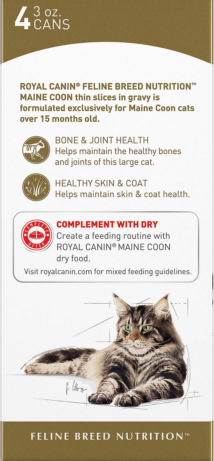royal canin maine coon canned cat food 3 oz pack of 4. Black Bedroom Furniture Sets. Home Design Ideas