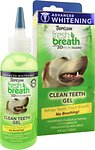 Dental Care - Breath Fresheners & Teeth Cleaning